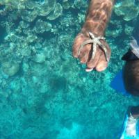 Maldives Seashine, hotel in Huraa