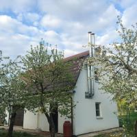 Holiday Home na Suvorovskoy
