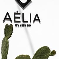 Aelia Mykonos , ξενοδοχείο στον Ορνό