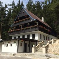 Hunting Lodge Vitkov, Hotel in Sokolov