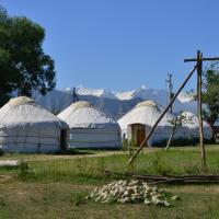 Jurten Camp Almaluu, hotel en Tong