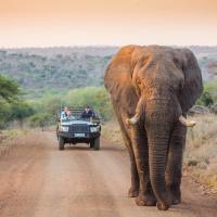 Leopard Mountain Safari Lodge, hotel in Manyoni Private Game Reserve