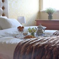 Усадьба купца Баева, отель в городе Степурино
