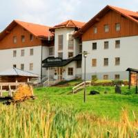 Arberresidenz Aparthotel garni, hotel in Bayerisch Eisenstein
