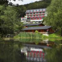 Waldhaus am See, hotel in Willingen