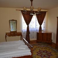 Casa Miki, hotel in Haţeg
