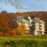 Hellmut-Waßmer-Jugendherberge Lörrach, hotel in Lörrach