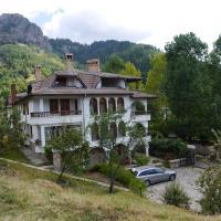 Family Hotel Silver, hotel in Smolyan