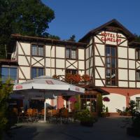 Hotel Camelot, hotel in Szczawno-Zdrój
