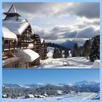 Les Terrasses du Mont blanc, hotel in Le Praz de Lys