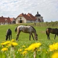 Stadnina Koni Nad Wigrami – hotel w mieście Mikolajewo
