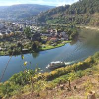 Romantisches Hirschhorn am Neckar