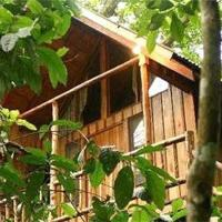 Bayrams Tree Houses, отель в Олимпосе
