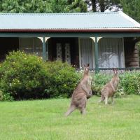 Cedar Lodge Cabins, hotel in Mount Victoria