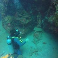 Anilao Scuba Dive Center (ASDC), hotel in Batangas City