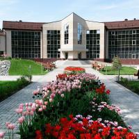 Санаторий Балкыш, отель рядом с аэропортом Международный аэропорт Казань - KZN в Петровском