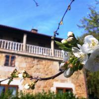 Casa Grande de Fuentemayor, hotel in Silleda