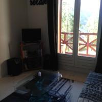 Studio Foux D'Allos Ski, hotel in La Foux