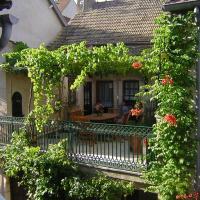 Le bon Cépage, hotel in Chassagne-Montrachet