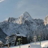 Hotel Alpina, hotel in Kranjska Gora