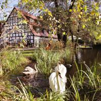 Springbach-Mühle Belzig, Hotel in Bad Belzig