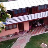 Pensiunea Daiana, hotel in Albac