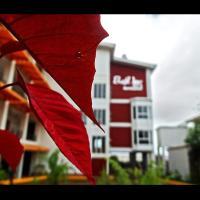 Hotel Casa Royale, отель в городе Bluefields