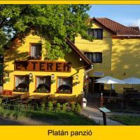Platán Panzió, hotel in Dobogoko