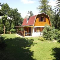 Holiday House Vranov Dam, отель в городе Oslnovice