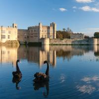 Stable Courtyard Bedrooms At Leeds Castle, hotel in Maidstone