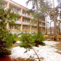 Отель Матвеевский, отель в Одинцово