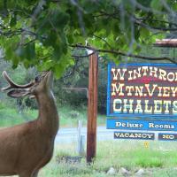 Winthrop Mountain View Chalets, hotel in Winthrop