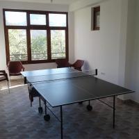 Guest house Pribojska Banja