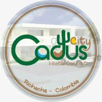 cactus city hostel confort