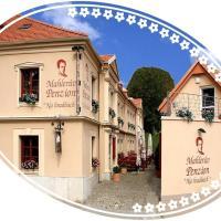 Mahleruv Penzion Na Hradbach, hotel en Jihlava