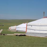Nomad Horse Camp