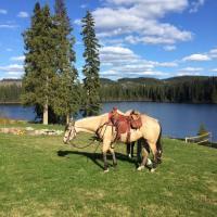 Montana Hill Guest Ranch, hotel em Bridge Lake