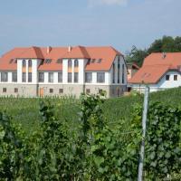 Weingut Taggenbrunn, Hotel in Sankt Veit an der Glan