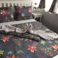 MASTER apartman, hotel in Sisak
