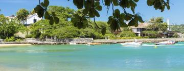 Hotéis perto de: Praia do Forte