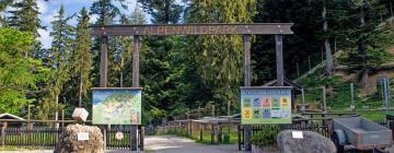 Alpenwildpark Pfänder: Hotels in der Nähe