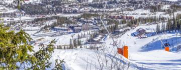 Hoteller i nærheden af Hemsedal skicenter