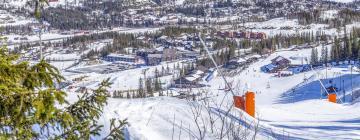 Hotels near Hemsedal Ski Centre