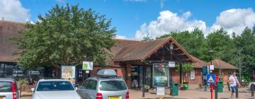Hotels near Maidstone Services M20