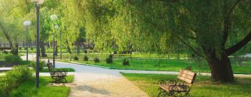 Hotéis perto de: Abu Khayal Garden Park