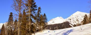 Hotels near Roza Khutor Ski Resort
