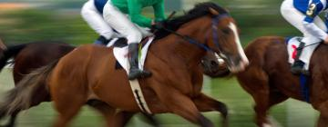 Hotels near Red Shores Racetrack & Casino