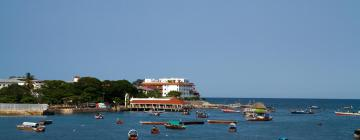 Hoteles cerca de Zanzibar Ferry Terminal