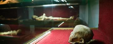 Hotels near The Mummies of Guanajuato Museum