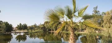 Hotels near Gan HaShlosa National Park